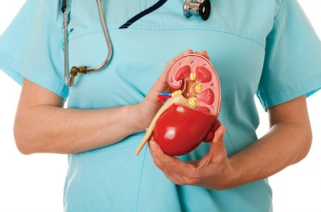 Transplantes de rins aumentam em Goiás