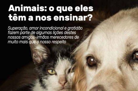 Terceira edição da Comunica! é dedicada à causa animal